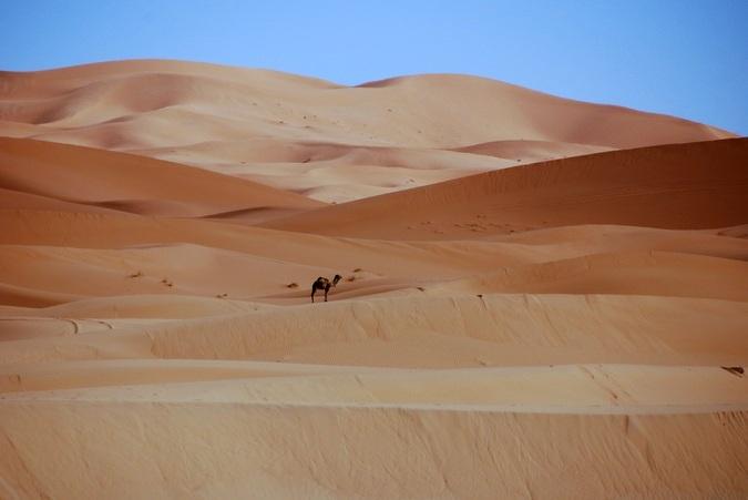 Voyage initiatique dans le désert